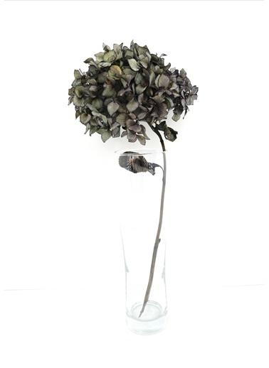Kuru Çiçek Deposu Gri Solmayan Tek Dal Ortanca Gri
